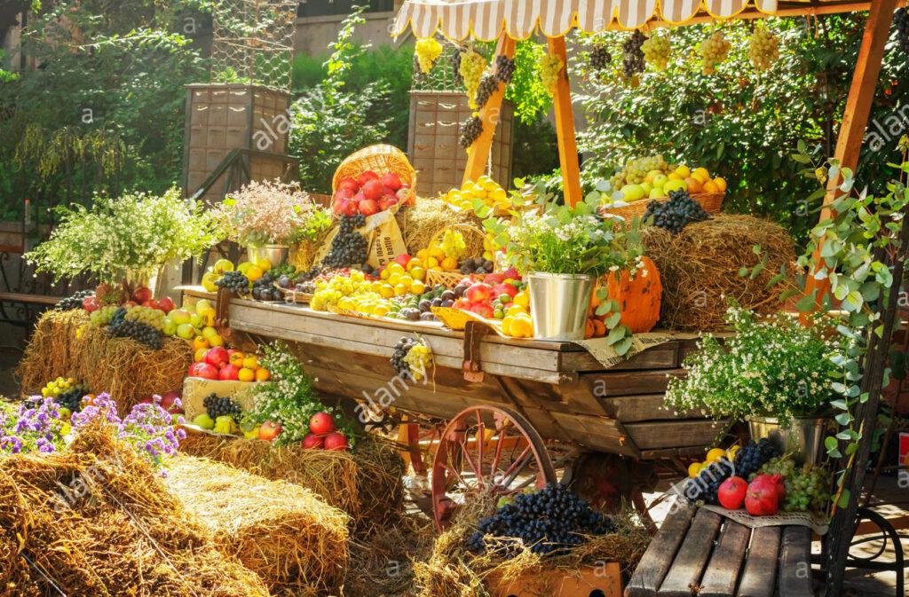 Photo of agricultural fair cart